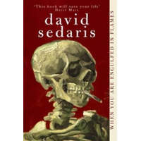 When You Are Engulfed In Flames – David Sedaris